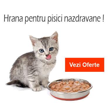 Oferta mancare pentru pisici